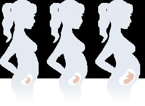 Woman Good Health - Pregnancy Steps